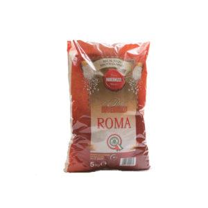 riso invernizzi grandi formati Roma. distribuito da gemal srl